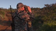 Hunting Blue Wildebeest with Ian Harford
