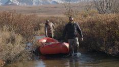Choosing a Hunting Partner