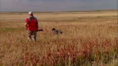 Prairie Birds and Mountain Trout