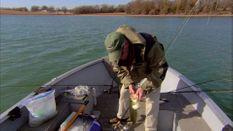 Reservoir Southern Bass & Crappie