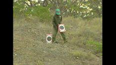 Limpopo Safari 1