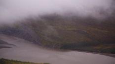 Alaska's Arctic Caribou