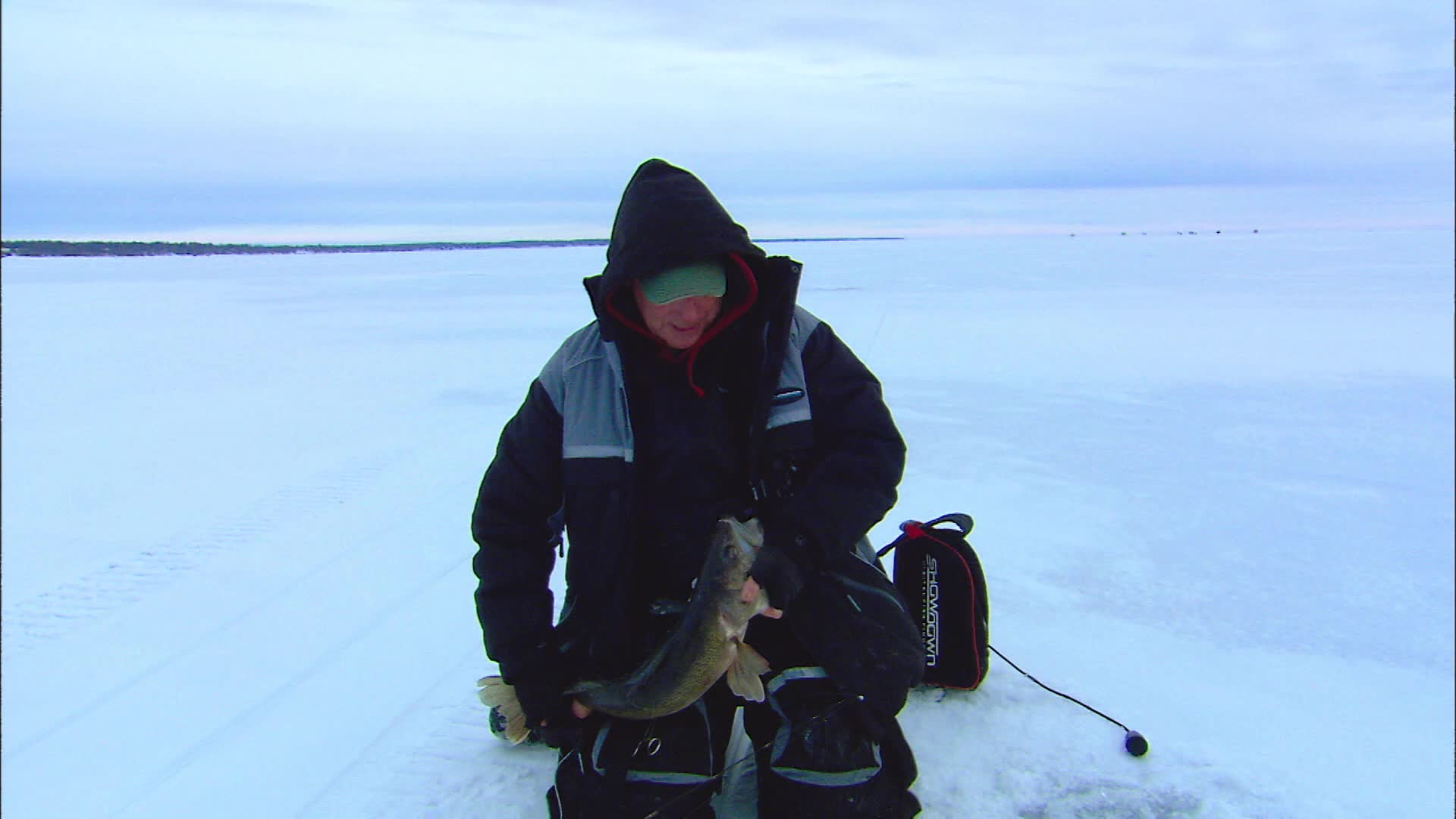 Speed Control for Icing Walleyes