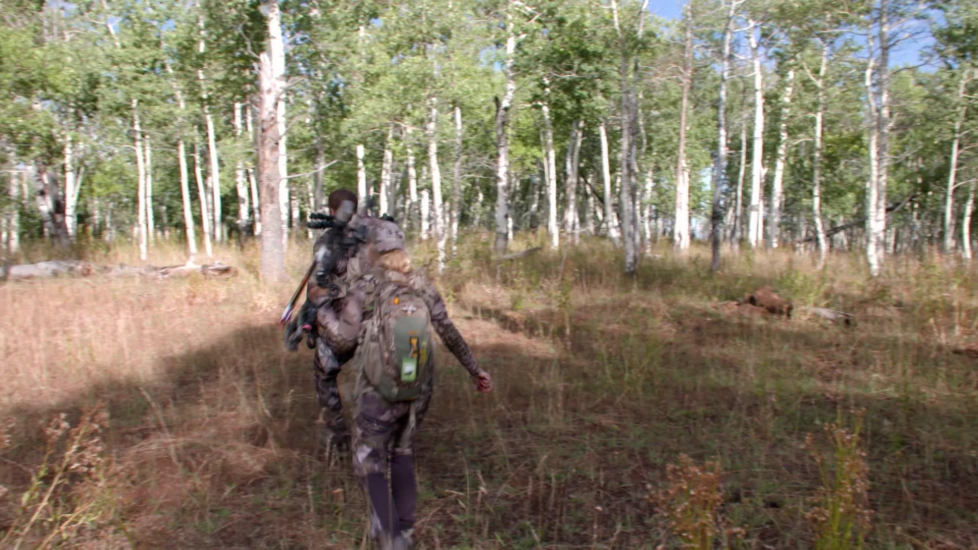Elk Paradise
