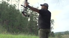 New Mexico Elk - 2018