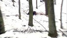 Wild Boar Fever 3