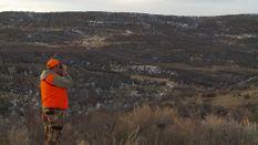 NW Colorado Mule Deer Hunt
