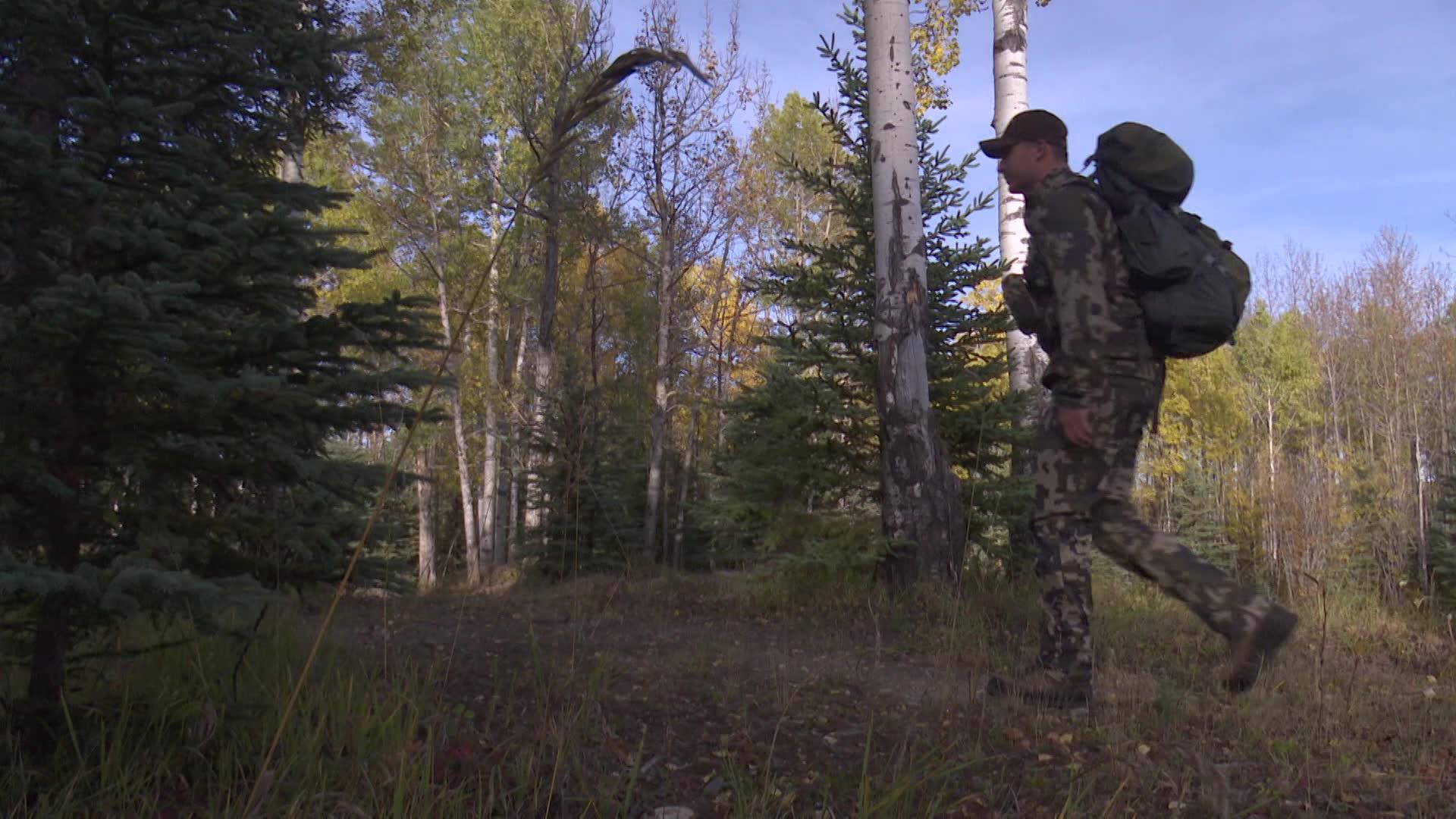BC: Pathfinder Elk Hunt