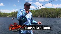 Drop Shot the Shallows