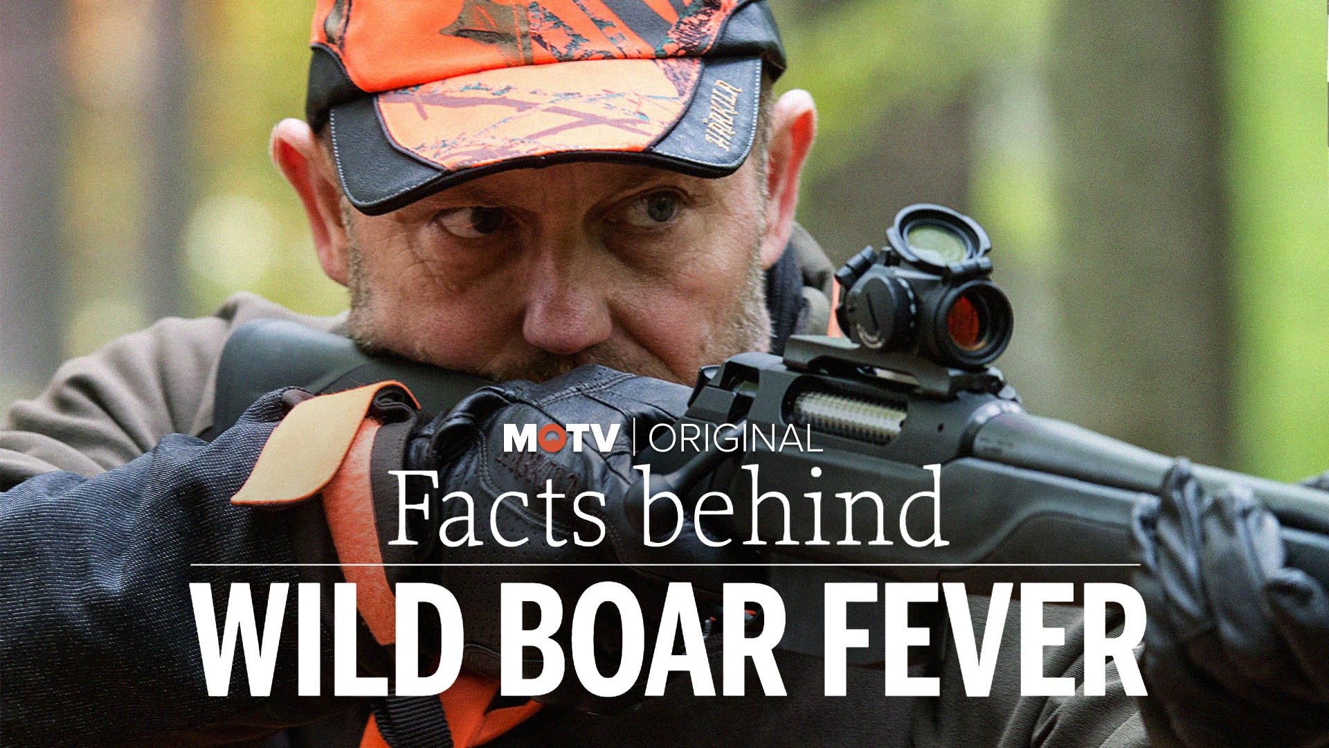 Facts Behind Wild Boar Fever