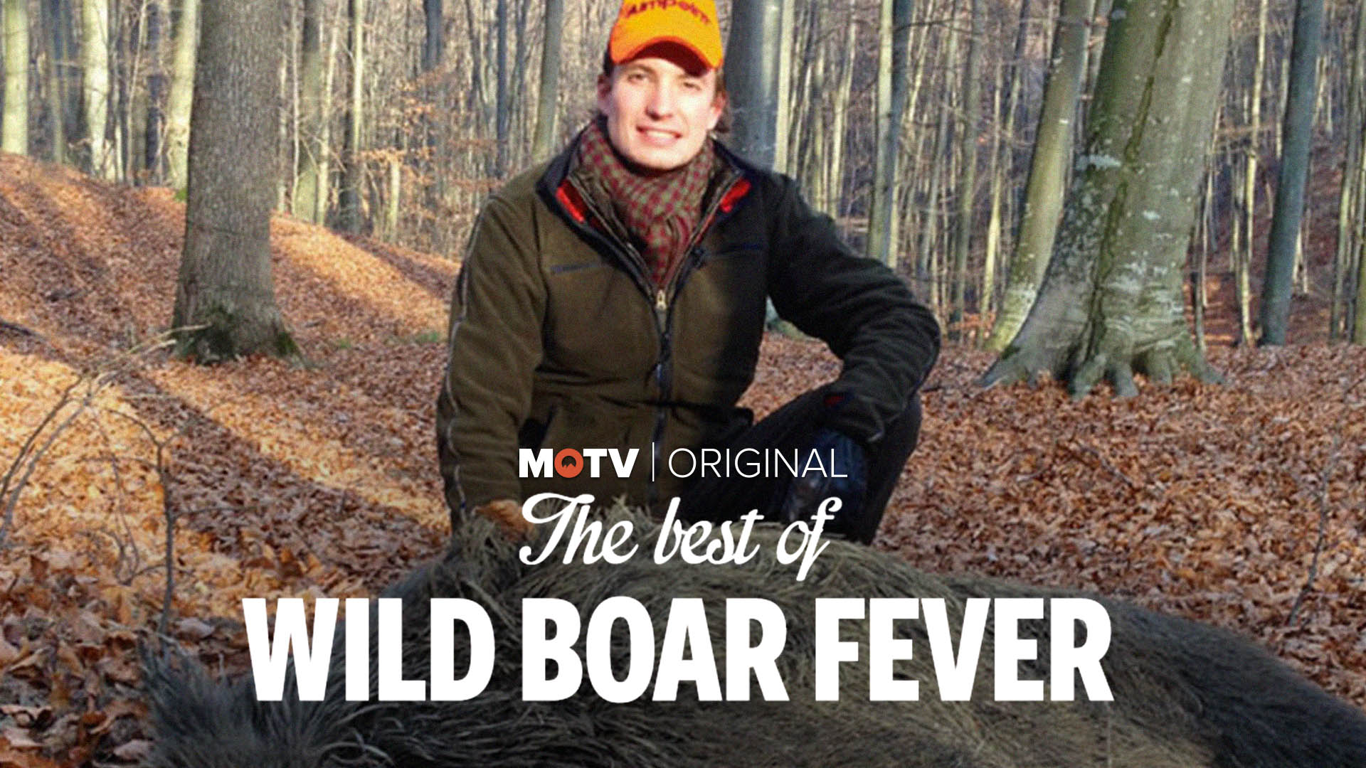 The Best Of Wild Boar Fever